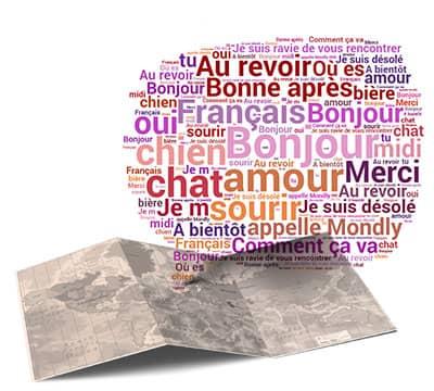 Imagen que muestra las frases y oraciones en francés que puedes aprender con Mondly